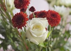 What do the Different Types of Flowers Mean?